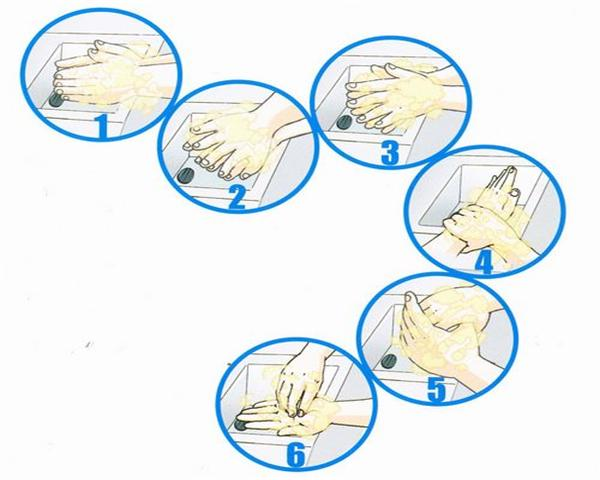 Washing Hands With 6 Steps, Reduce The Number Of Bacteria